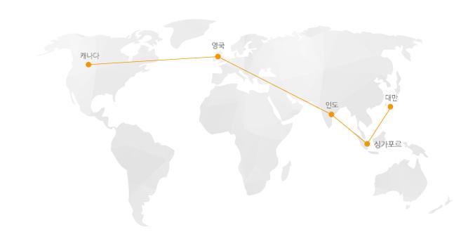 Company_global_network